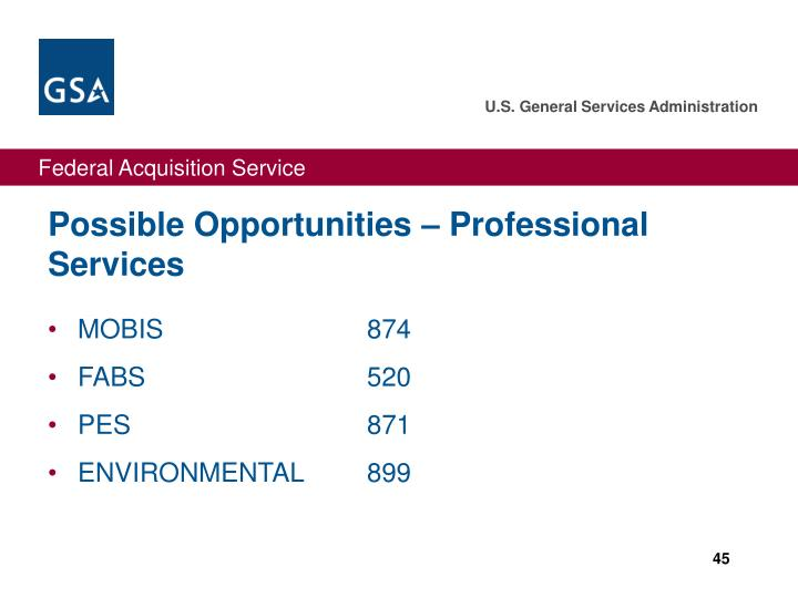 Possible Opportunities – Professional Services