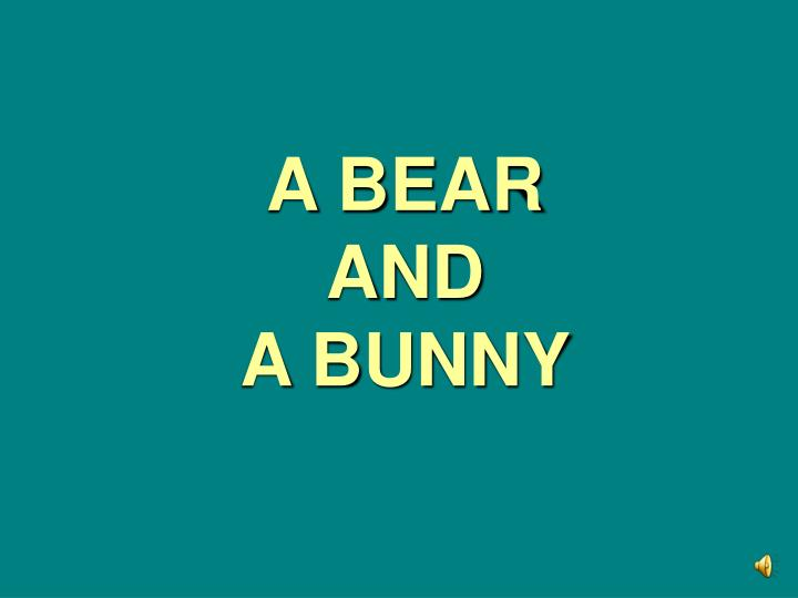 A bear and a bunny