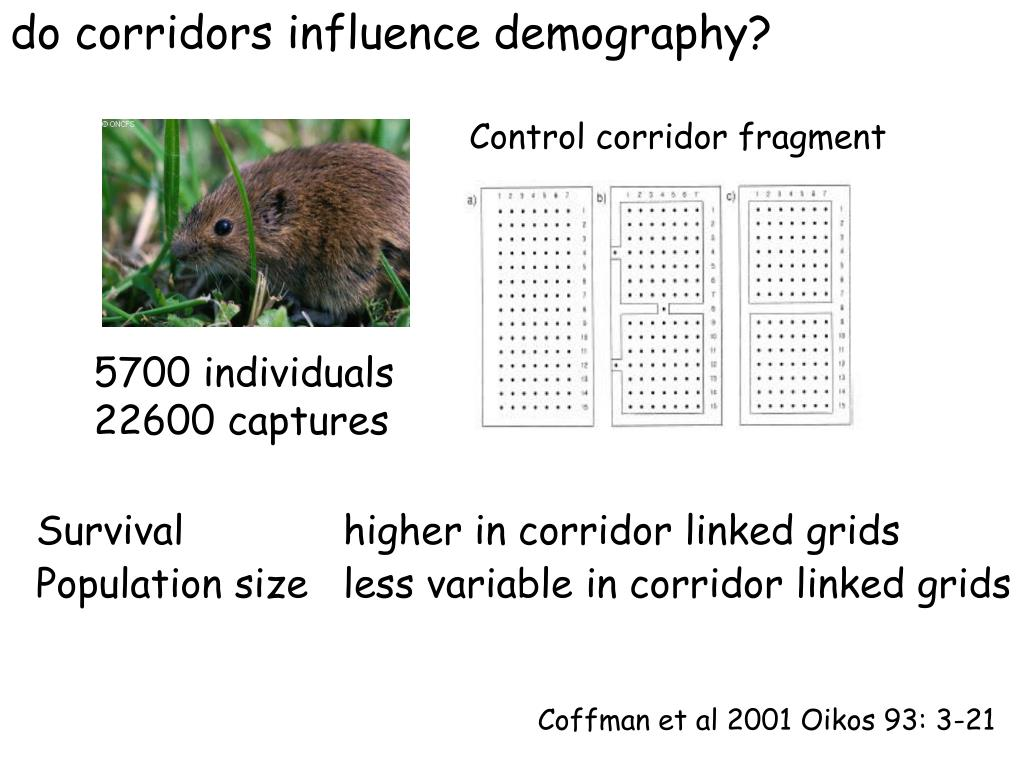 do corridors influence demography?