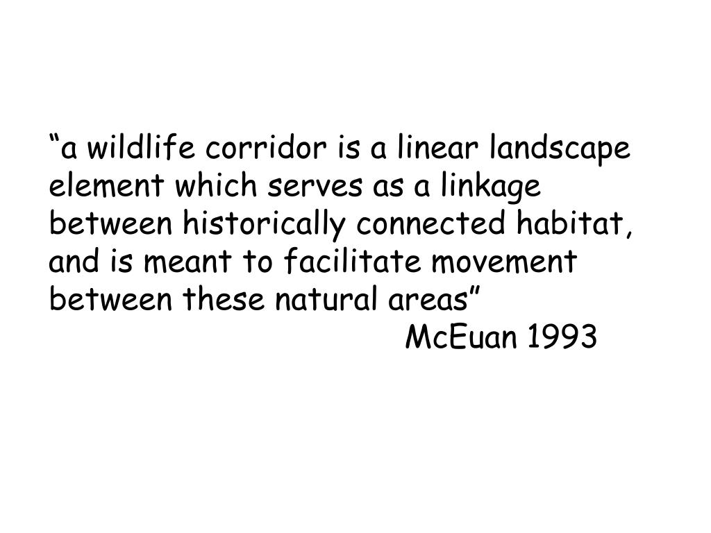 """a wildlife corridor is a linear landscape element which serves as a linkage between historically connected habitat, and is meant to facilitate movement between these natural areas"""