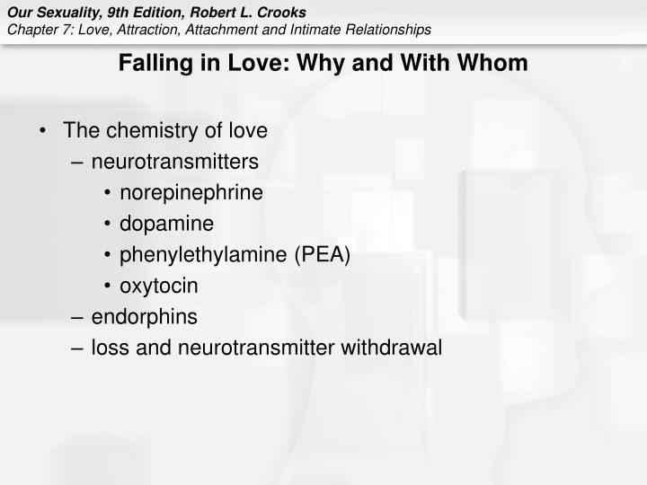 Falling in Love: Why and With Whom
