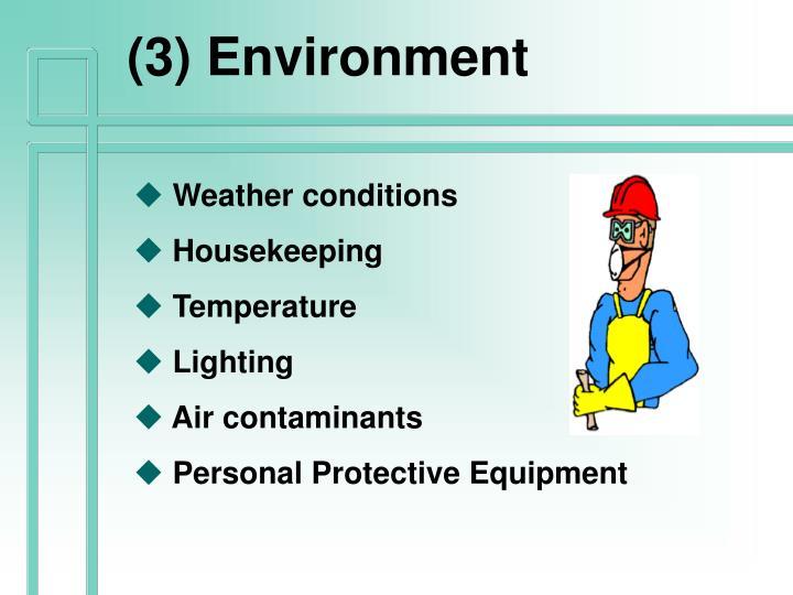 (3) Environment