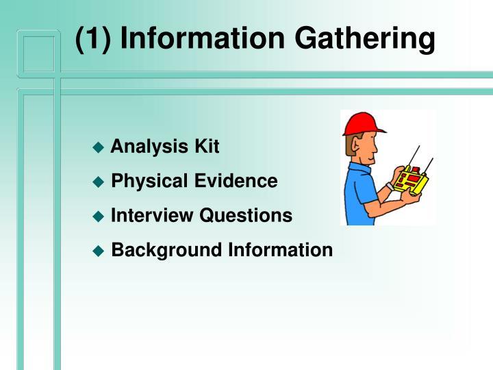 (1) Information Gathering