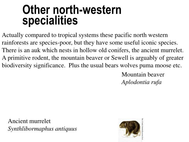 Other north-western specialities