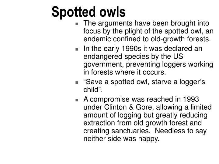 Spotted owls