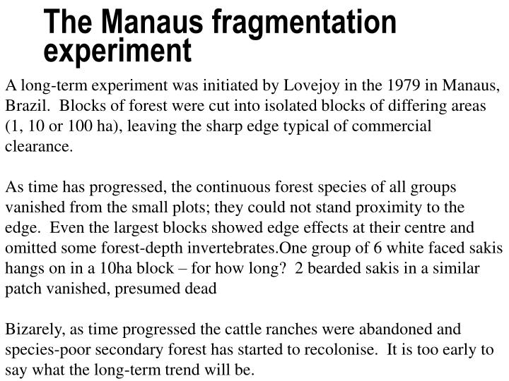 The Manaus fragmentation experiment