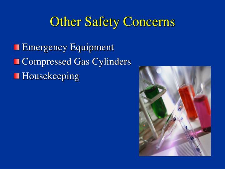 Other Safety Concerns