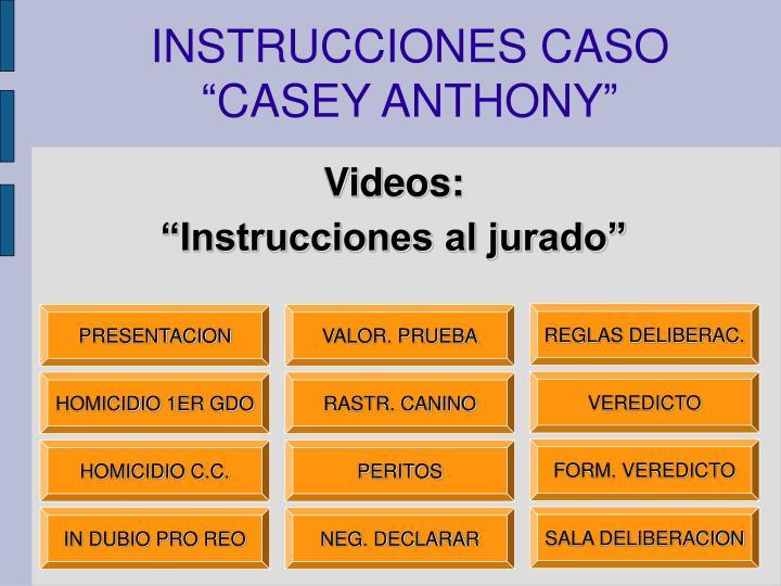 INSTRUCCIONES CASO