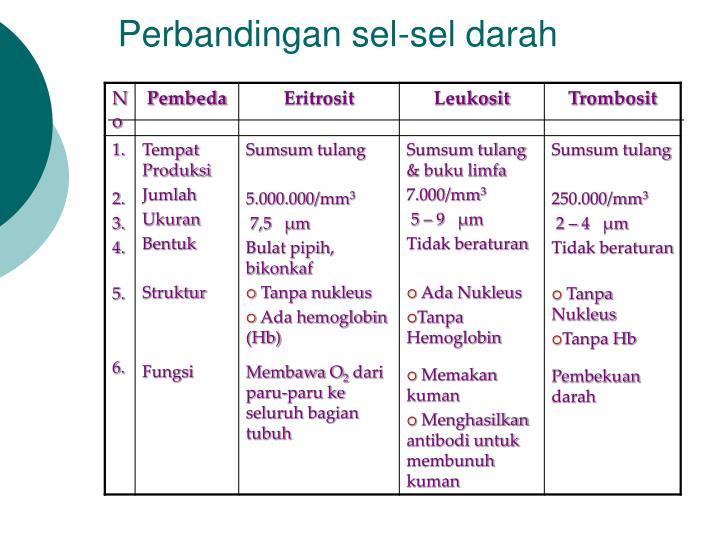 Perbandingan sel-sel darah