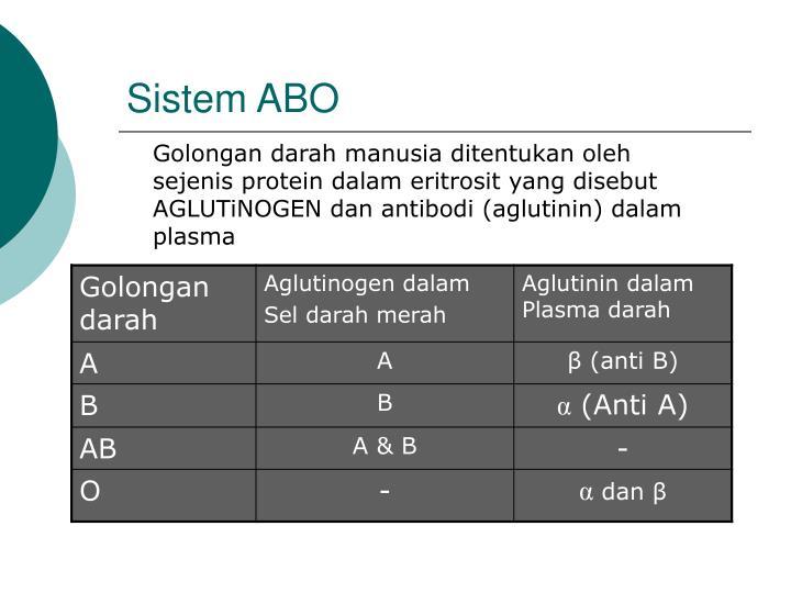 Sistem ABO