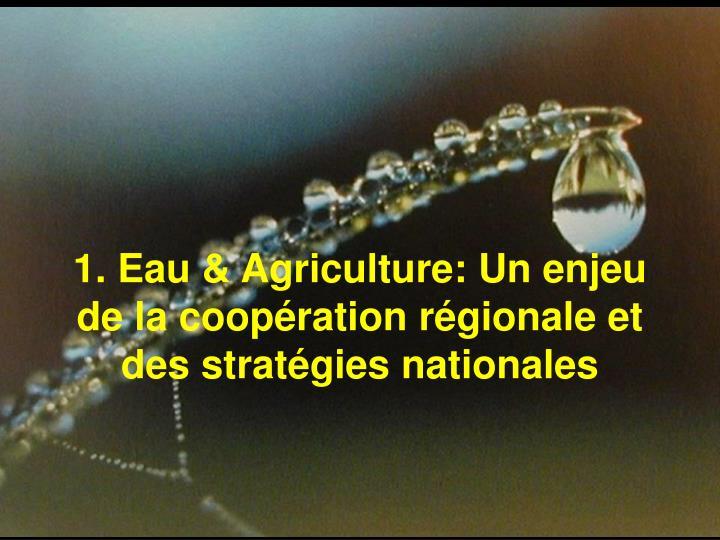 1. Eau & Agriculture: Un enjeu de la coopération régionale et des stratégies nationales