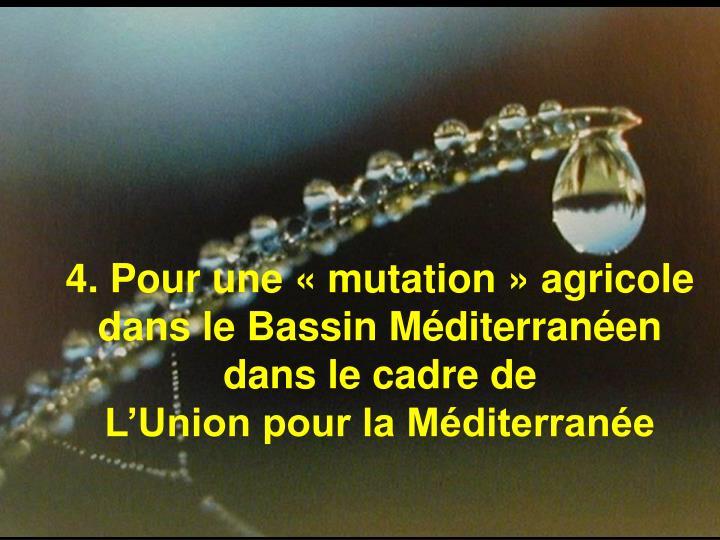 4. Pour une «mutation» agricole dans le Bassin Méditerranéen dans le cadre de