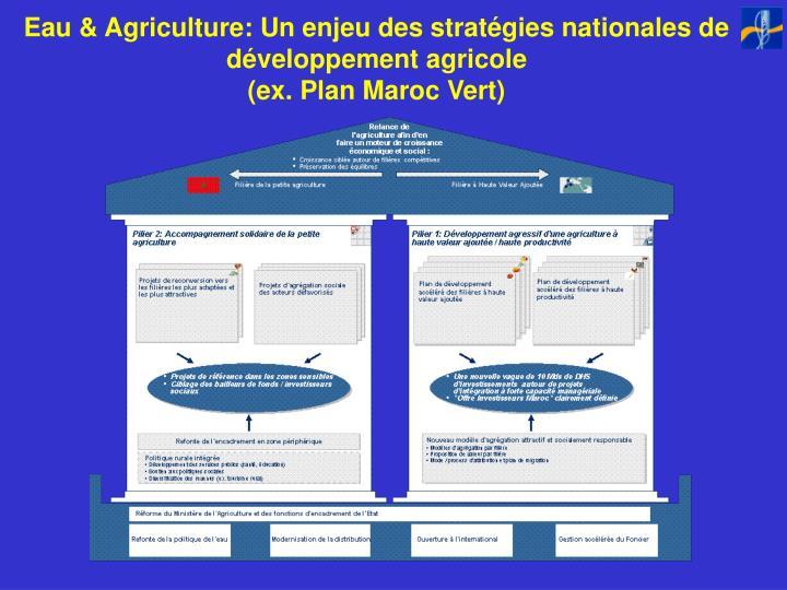 Eau & Agriculture: Un enjeu des stratégies nationales de développement agricole