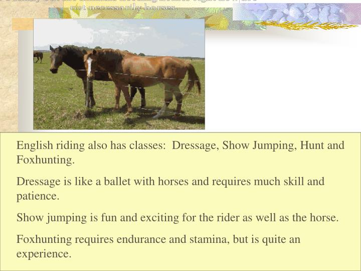 English riding also has classes:  Dressage, Show Jumping, Hunt and Foxhunting.