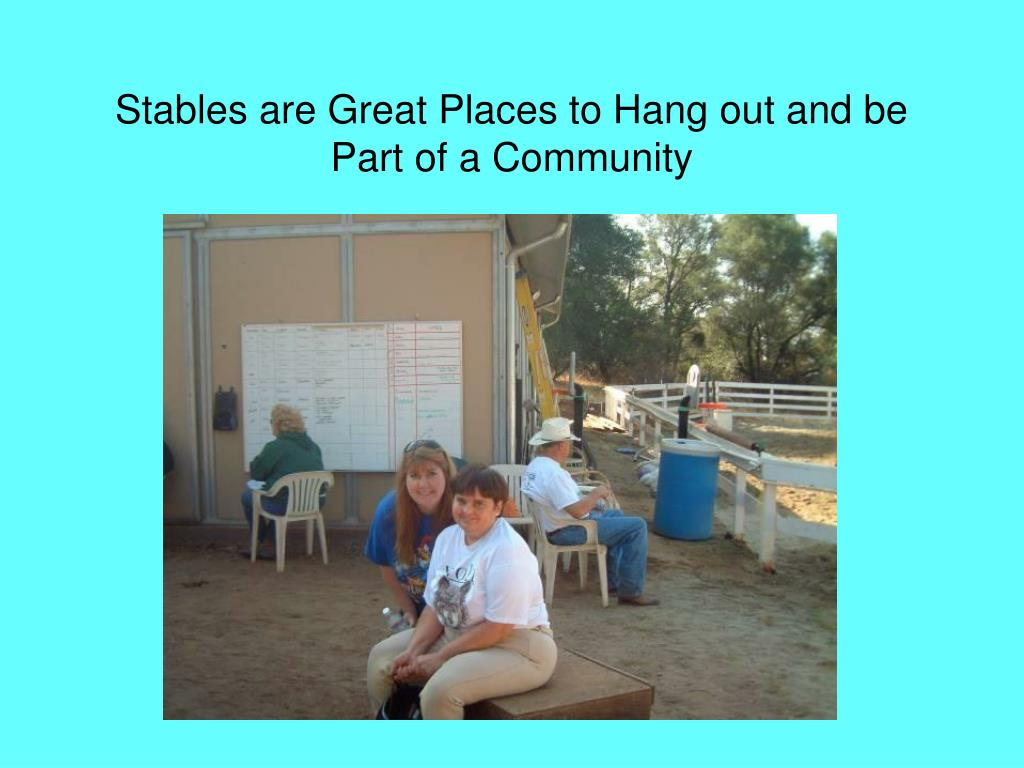 Stables are Great Places to Hang out and be Part of a Community