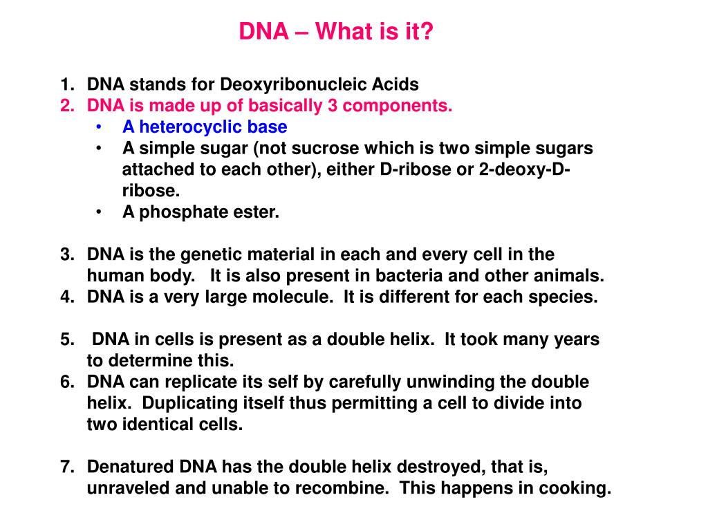 DNA – What is it?