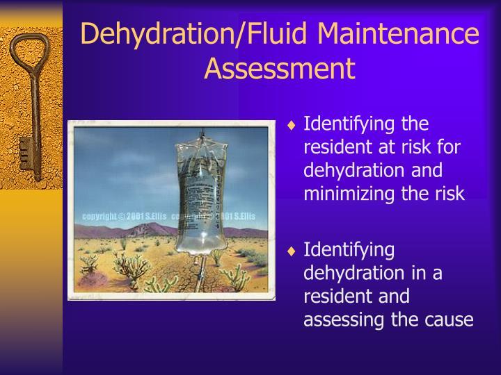 Dehydration/Fluid Maintenance Assessment
