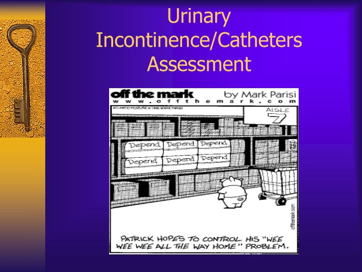 Urinary Incontinence/Catheters Assessment