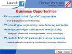 business opportunities1