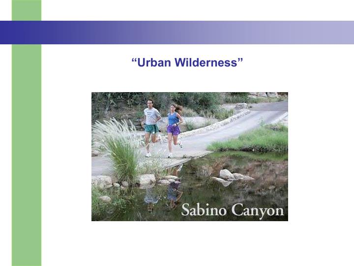 """Urban Wilderness"""