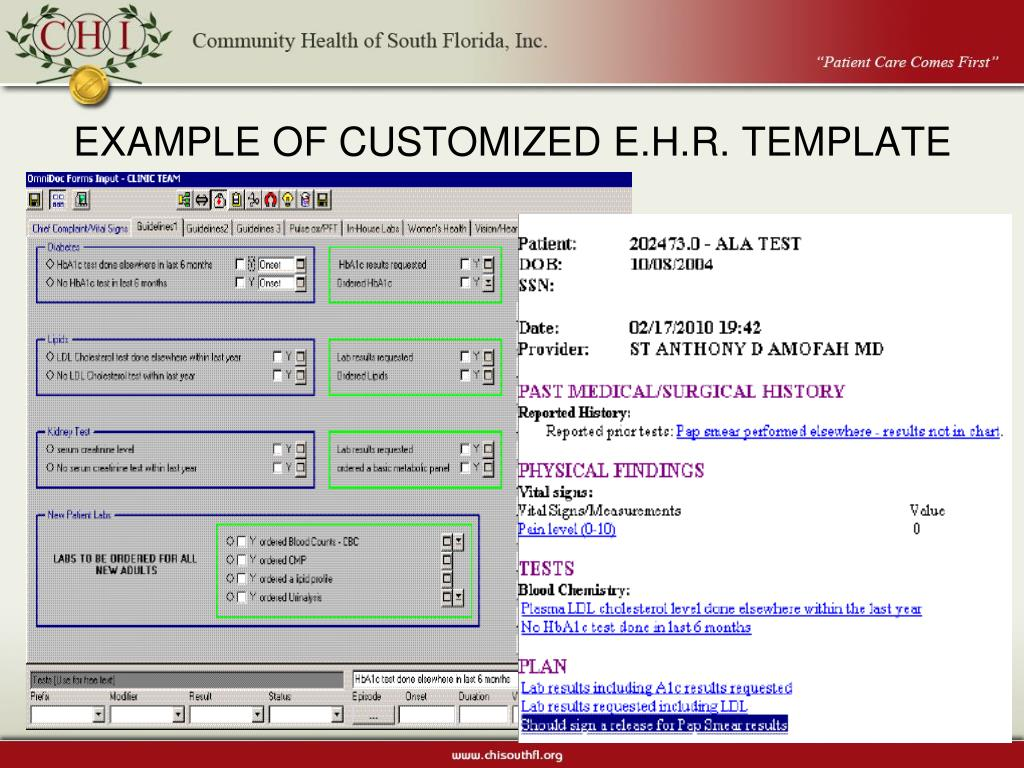EXAMPLE OF CUSTOMIZED E.H.R. TEMPLATE