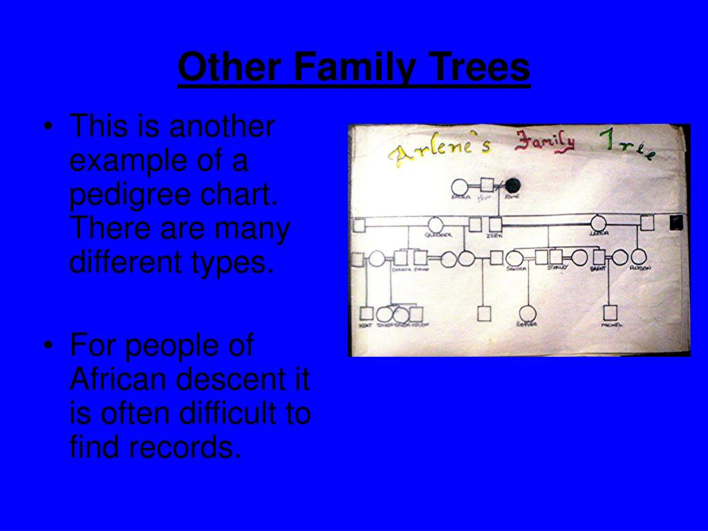 Other Family Trees
