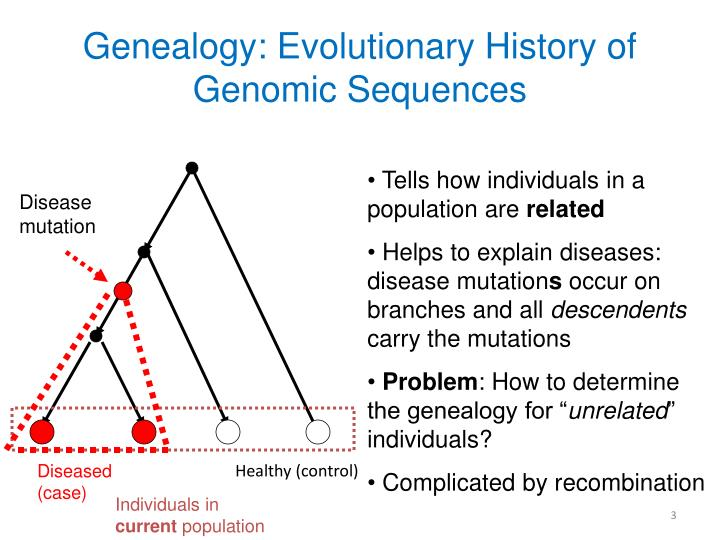 Genealogy evolutionary history of genomic sequences