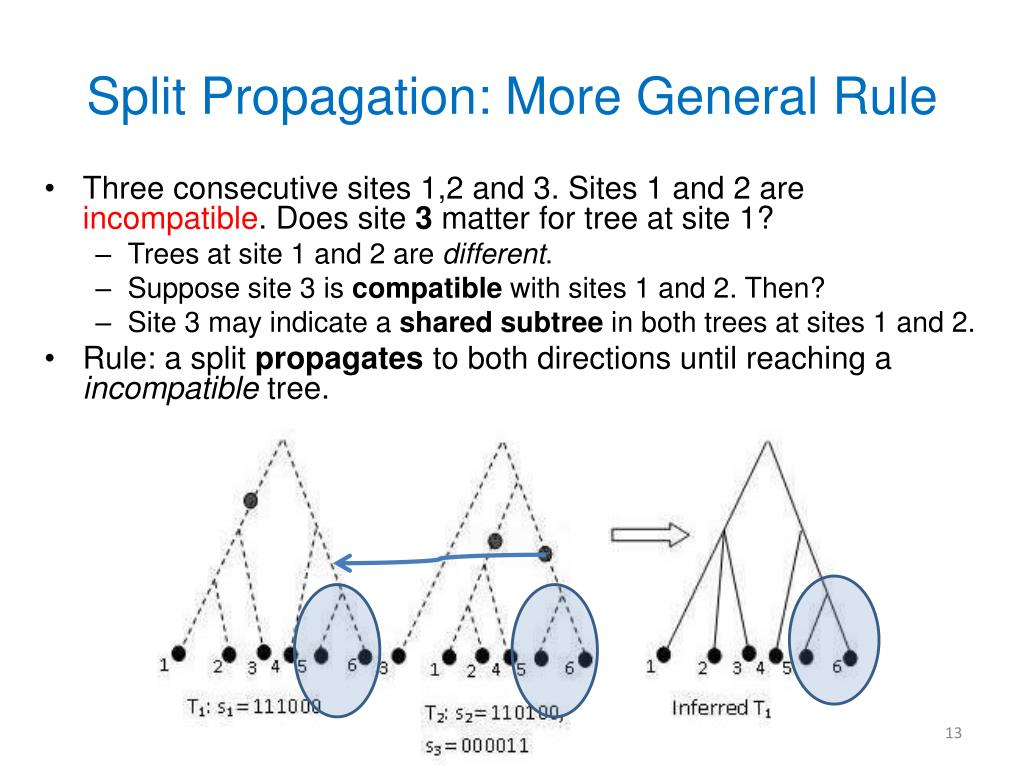 Split Propagation: More General Rule