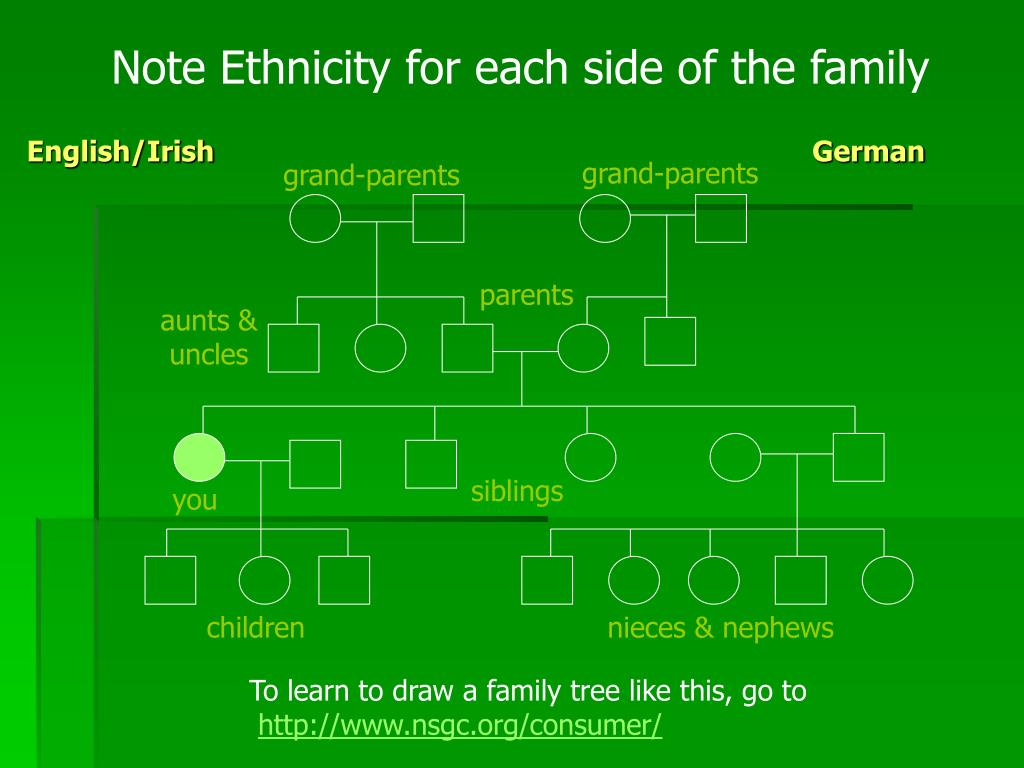 Note Ethnicity for each side of the family