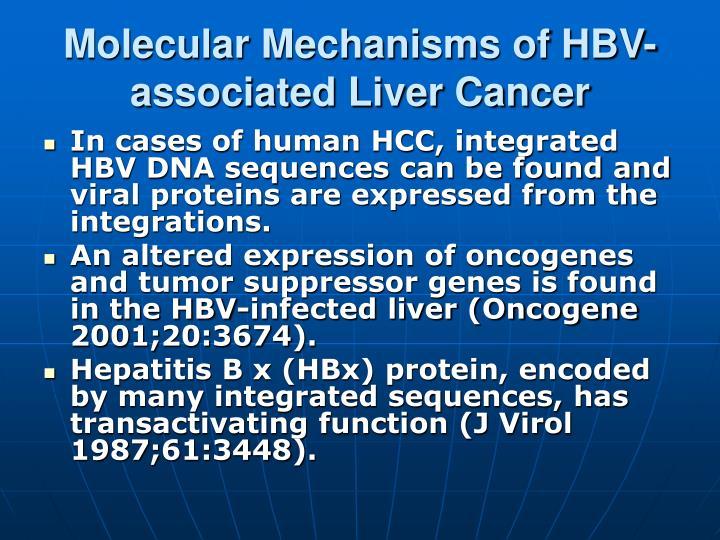 Molecular Mechanisms of HBV-associated Liver Cancer
