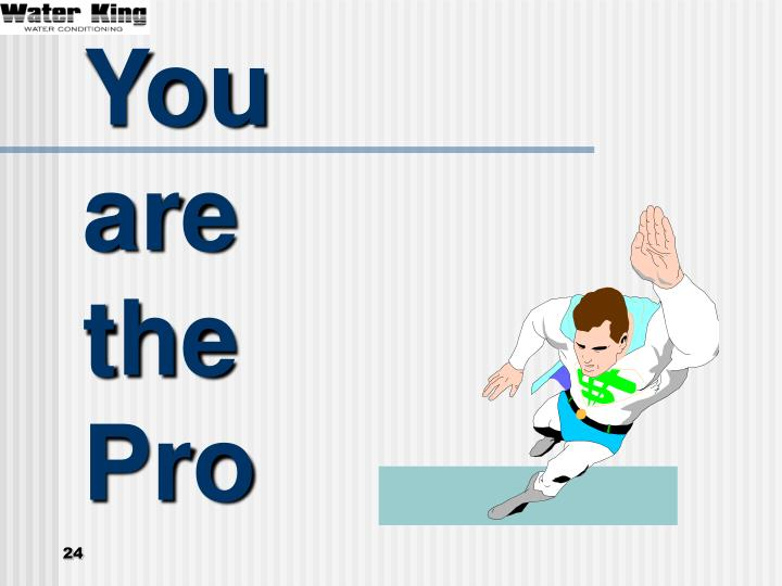 You are the Pro