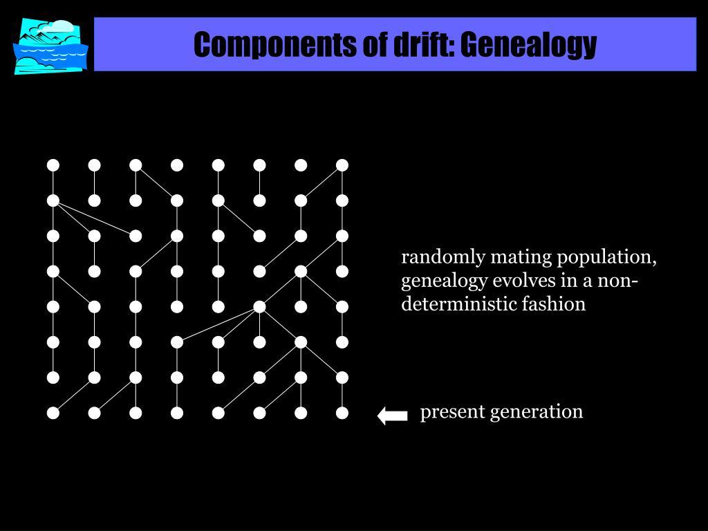 Components of drift: Genealogy