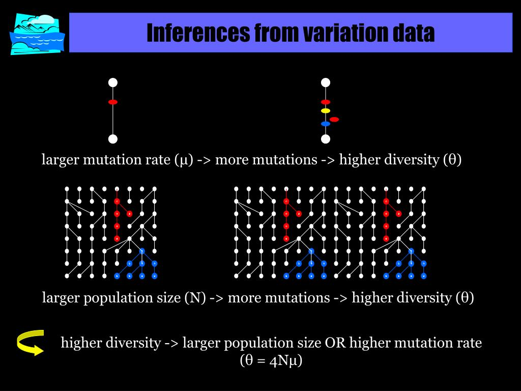 Inferences from variation data