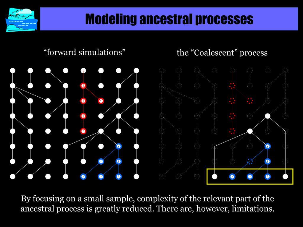 Modeling ancestral processes