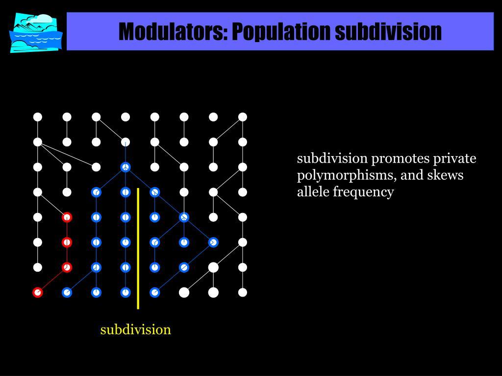 Modulators: Population subdivision