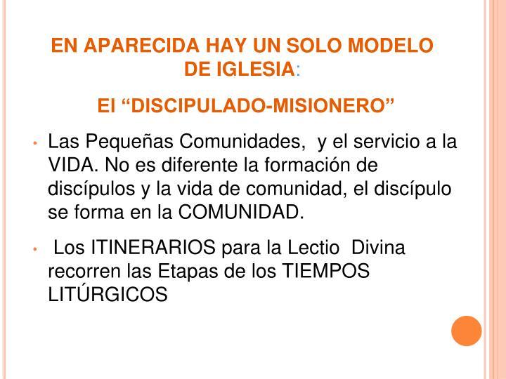 EN APARECIDA HAY UN SOLO MODELO DE IGLESIA