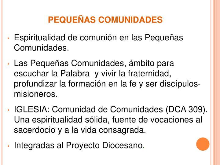 PEQUEÑAS COMUNIDADES