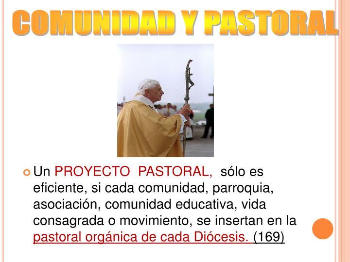 COMUNIDAD Y PASTORAL