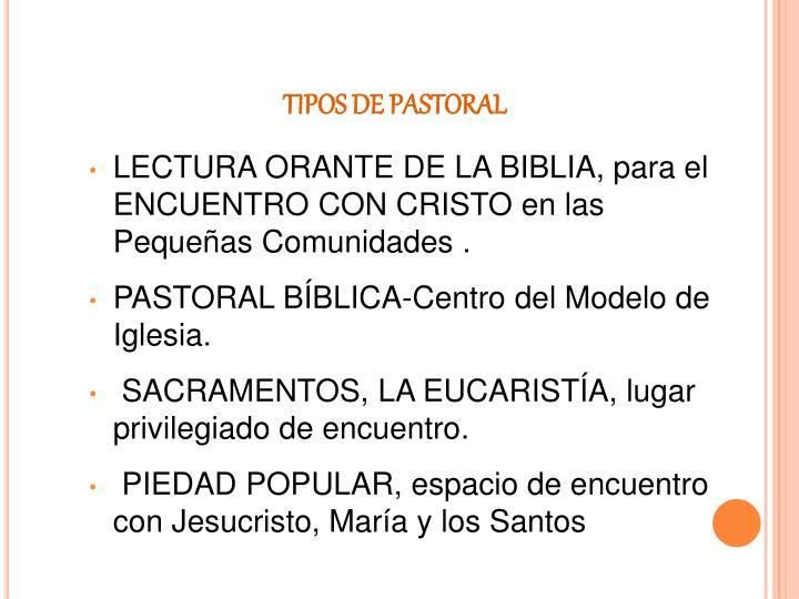 TIPOS DE PASTORAL