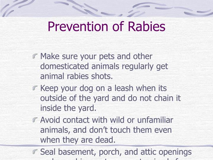 Prevention of Rabies