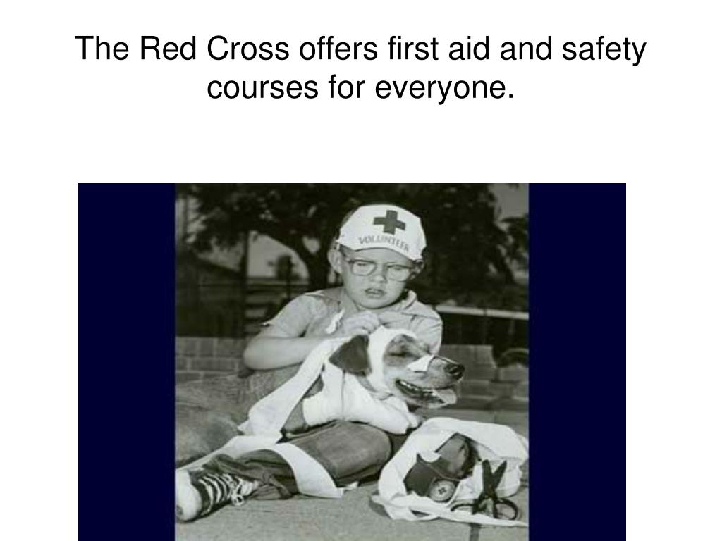 The Red Cross offers first aid and safety courses for everyone.