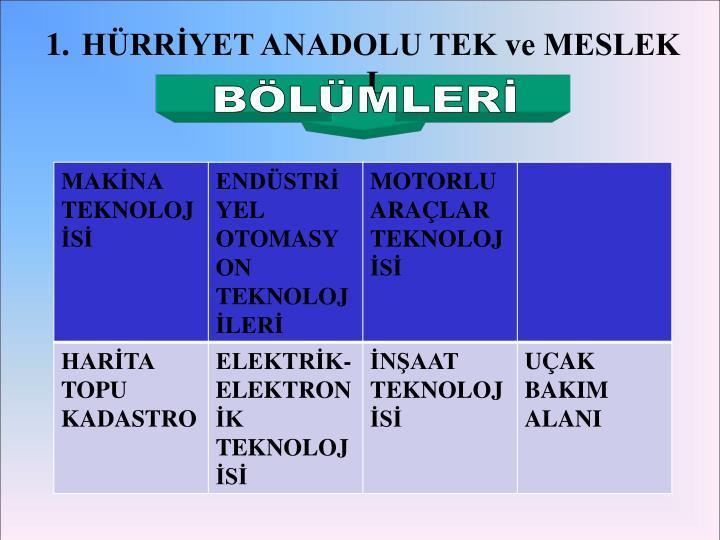 HÜRRİYET ANADOLU TEK ve MESLEK L.