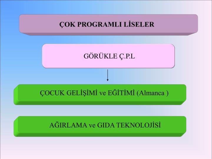 ÇOK PROGRAMLI LİSELER