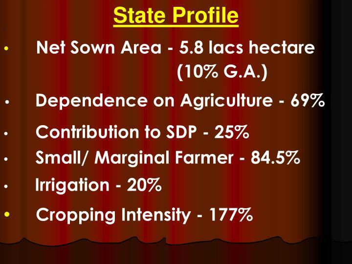 State Profile