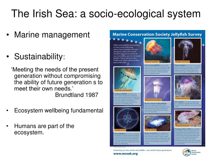 The irish sea a socio ecological system