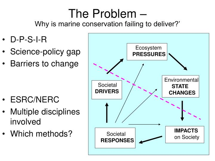 The problem why is marine conservation failing to deliver