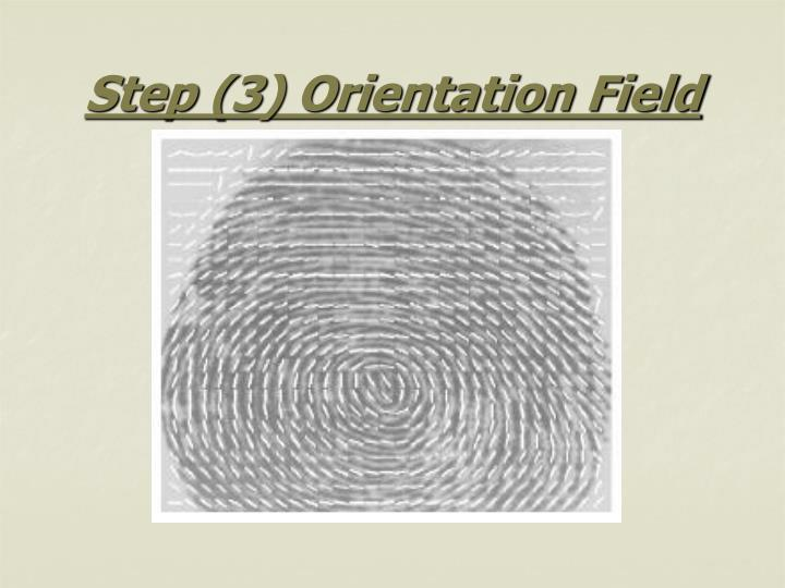 Step (3) Orientation Field