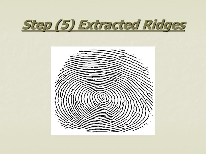 Step (5) Extracted Ridges