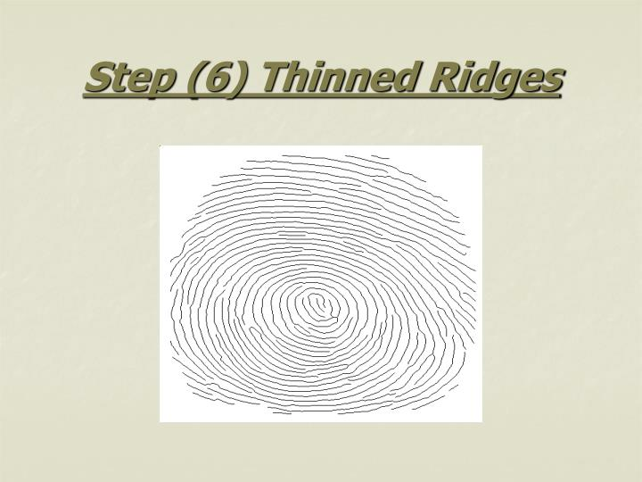 Step (6) Thinned Ridges