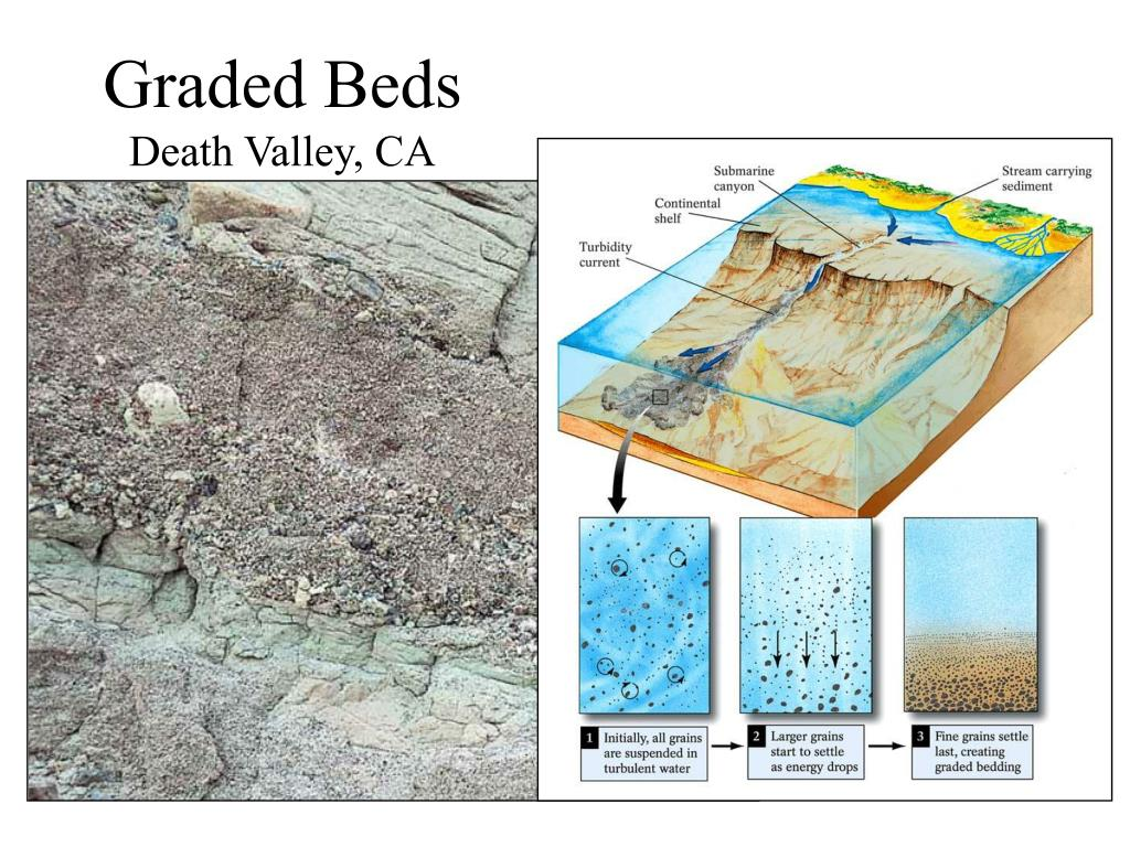 Graded Beds